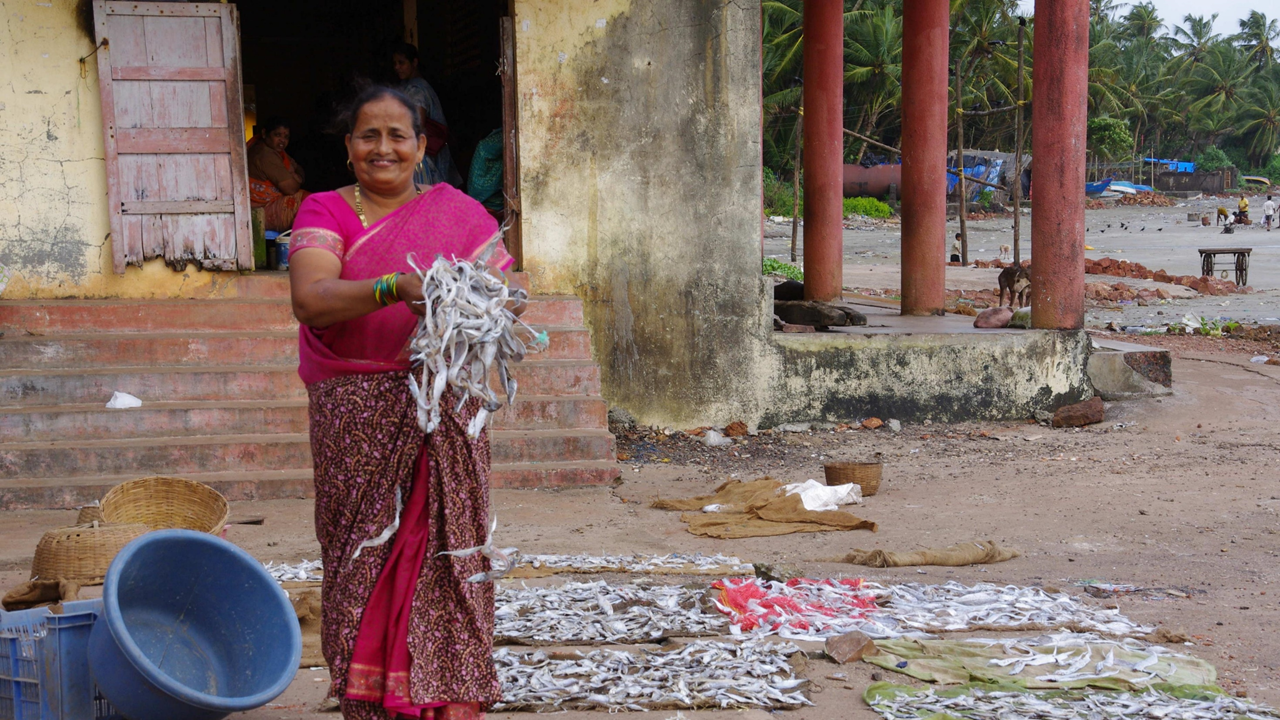 Fisherwoman with dried fish, Malvan (Karnataka)